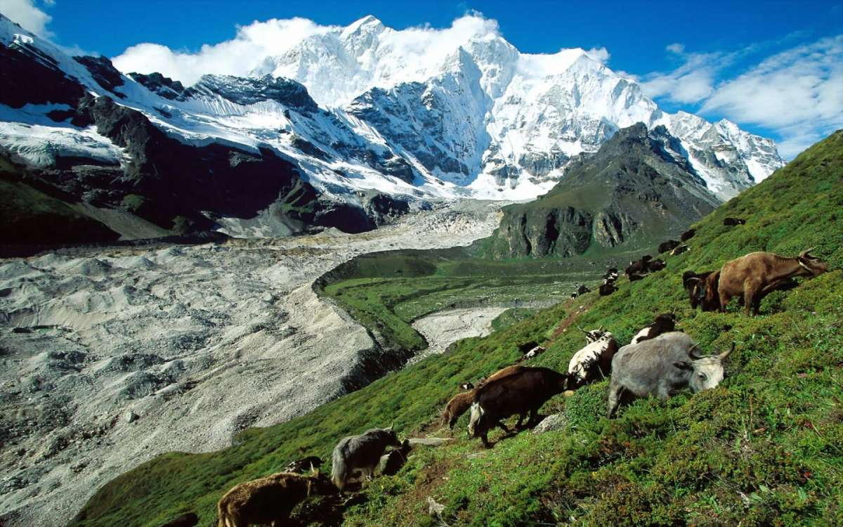 Tibet-Cina